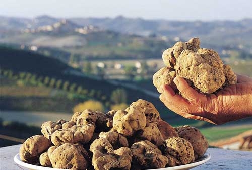 Volterra in festa con la IX Mostra Mercato del Tartufo Marzuolo