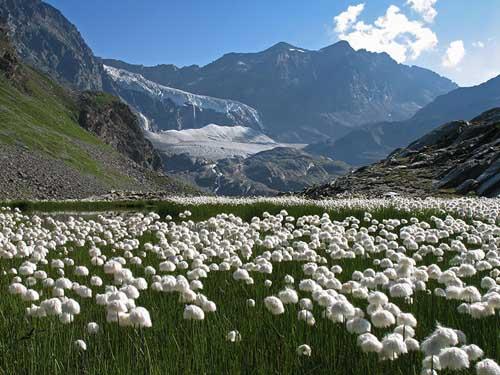 La Valtellina: una destinazione per fare il giro del mondo e un viaggio nel tempo