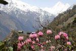 Nepal: Nel 2017 oltre un milione di visitatori