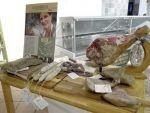 PromoRieti, un social eating per promuovere le produzioni locali