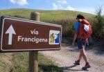 Accordo Trenitalia/Aevf: integrare la via Francigena con il treno