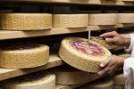 Il formaggio Piave DOP raccontato con ricette inedite e scatti d'autore