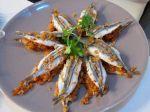 Michele Chinappi apre un nuovo ristorante a Formia