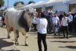 Torna AGRIUMBRIA, il più importante evento fieristico del Centro Italia per Agroalimentare e Zootecnica